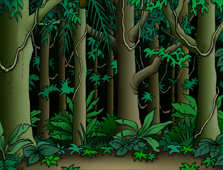 forest jungle: Cartoon jungle background