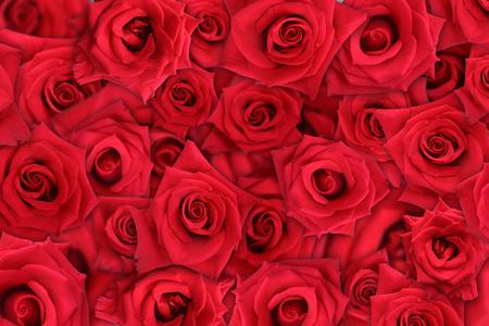 Rose Contesto Archivio Fotografico - 1479298