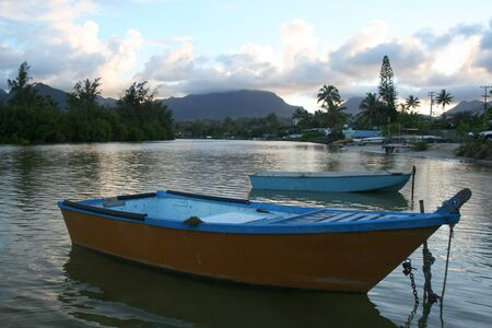 rowboats: Rowboats docked in a river in Hawaii