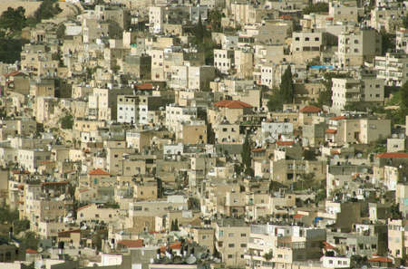 overpopulation: Jerusalem Hillside