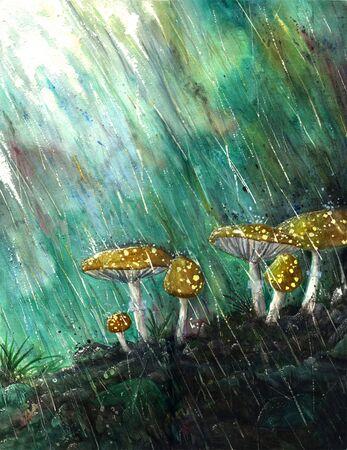 Watercolor painting of rain splashing down on mushrooms