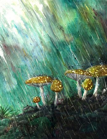 watercolour: Watercolor painting of rain splashing down on mushrooms