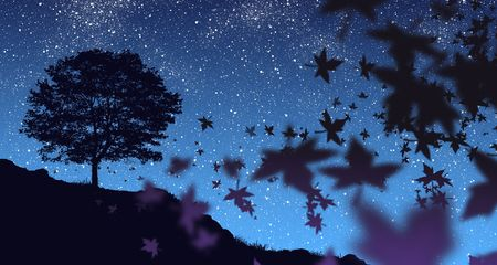 fall of the leaves: Autumn Night Stock Photo
