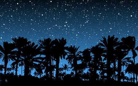 travel star: Palm Trees Under Stars Illustration