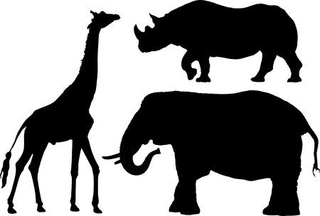 African animal profiles on white