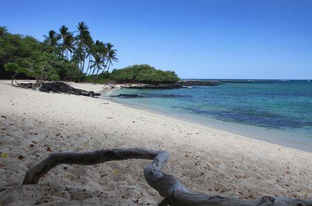 Beautiful Hawaiian Beach photo