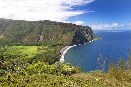 big scenery: Waipi'o Valley