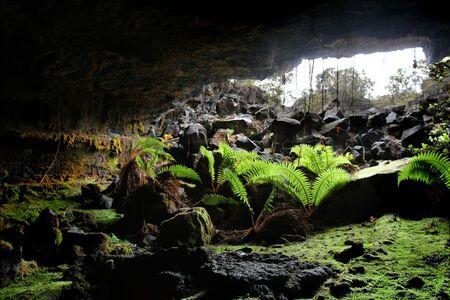 jaskinia: WejÅ›cie lawy rurki Cave 1 Zdjęcie Seryjne