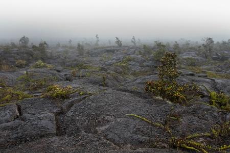 Lava Rock Landscape Reklamní fotografie