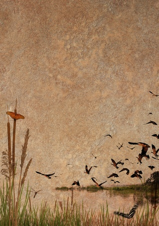 Wilderness elements composited on a stone texture. Includes butterflies, a dragonfly, and flock of canadian geese
