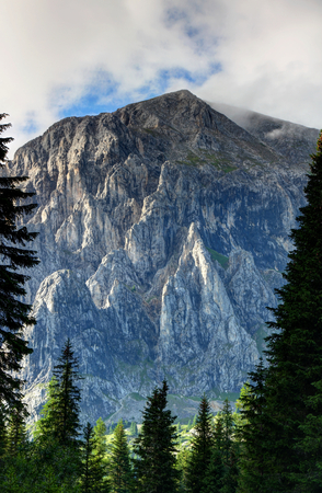 Sunlit vertical rock faces of Monte Peralba Hochweissstein peak towers high above tall pine trees in Piave river valley, Alpi Carniche Sappada Carnia Udine Friuli Venezia Giulia Northern Italy Europe Stock Photo