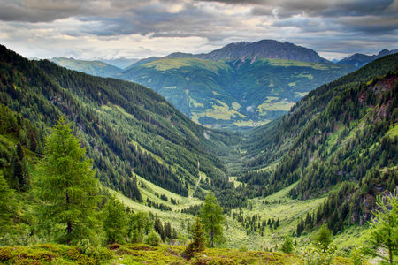 U-shaped valley with lush green forests and meadows in Karnische Alpen with Eggenkofel peak of Gailtaler Alpen Lienzer Dolomiten in cloudy morning, Untertilliach Lesachtal Osttirol Austria Europe