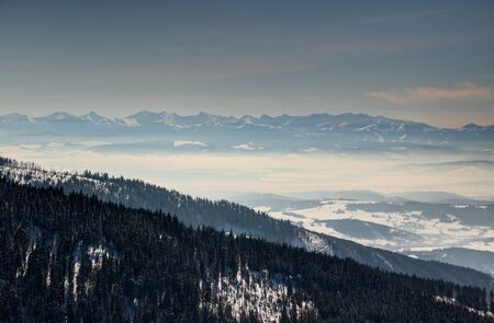 Winter scenery with pine forests on slopes of Babia hora peak, Orava valley filled with mist and sunlit blue ridges of Zapadne Tatry range, Orawa and Liptov regions Poland  Slovakia Central Europe