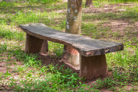 seclusion: Wooden bench in the garden