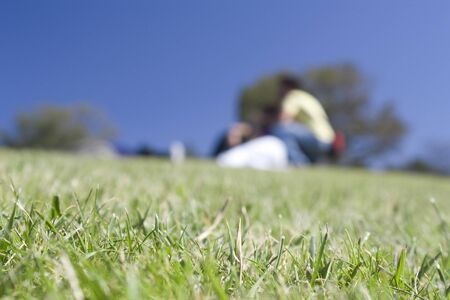 focus group: One out of focus group of people playing in the grass Stock Photo