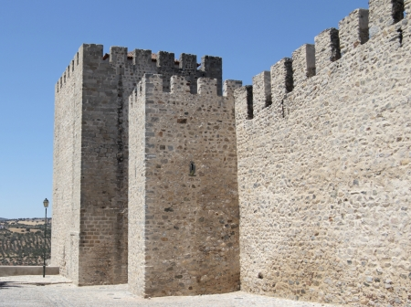 A bit of datailed Wall of a medieval castle