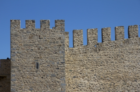 A bit of datailed Wall of a medieval castle photo