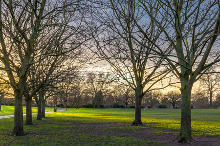 Sunset at a regents park in unted kingdom on a overcast sky