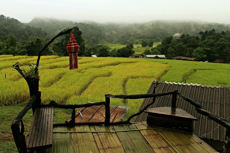 doi: Nature on Doi Inthanon, Chiang Mai, Thailand. Stock Photo