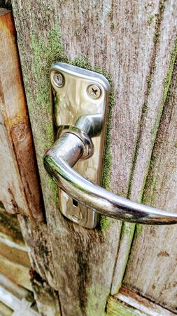 Lichen on old teak doors with moisture. Stok Fotoğraf