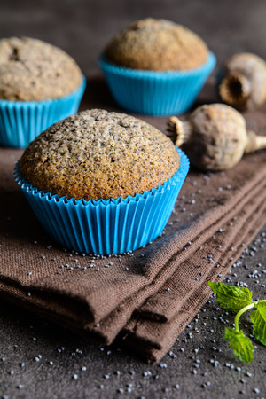 poppy seeds: Homemade healthy muffins with poppy seeds