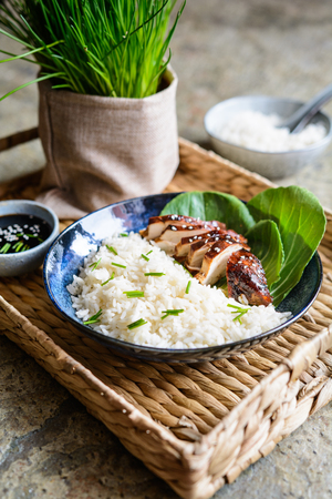 Baked teriyaki chicken breast with bok choy, served with rice Stock Photo
