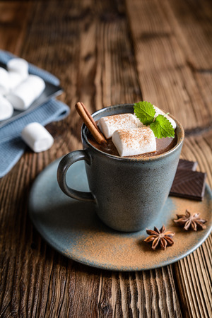 Delicious hot chocolate with marshmallows, sprinkled with cinnamon