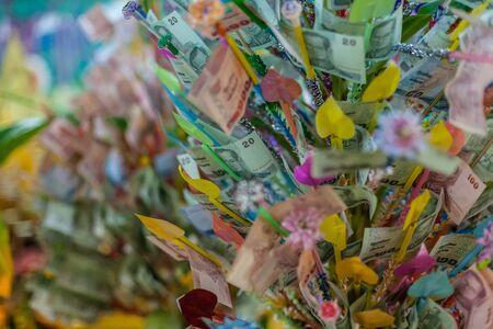 formalize: Money Flower