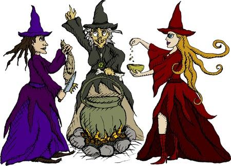 sabbath: Vector illustration of three witches Illustration