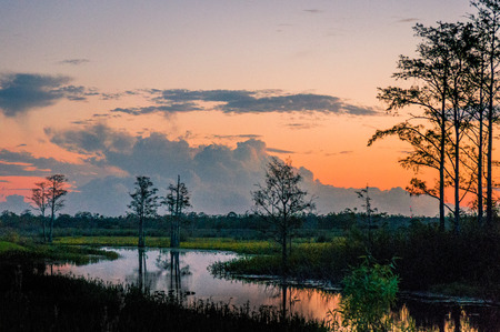 brilliant sunset reflecting in a lake through cypress trees in Louisiana Stock Photo
