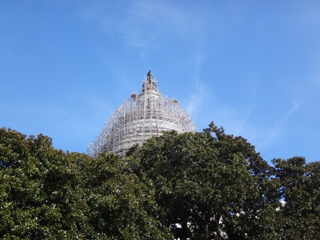 Capitol Hill dome and the tree tops Stock Photo