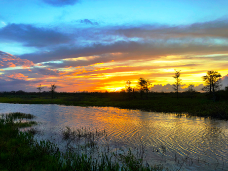 swamp sunsets in the marsh with ripples in the water