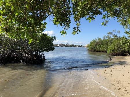beach towel on the sand under tropical trees