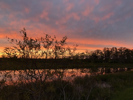stunning sunset in the swamps of the Everglades in Florida Stock Photo