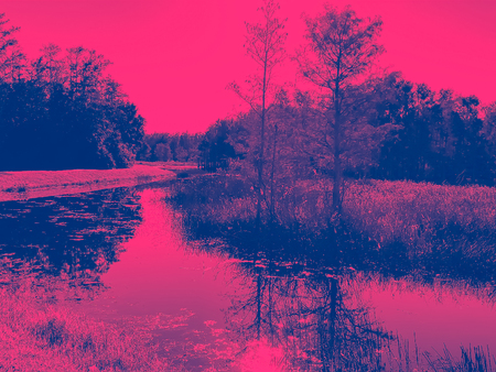 ditigally altered photograph of a landscape showing a River in the Florida Everglades.  Hot pink and blue colors.