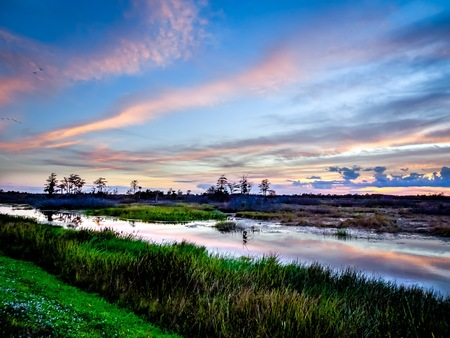 pink and blue sunset in the swamps of Florida