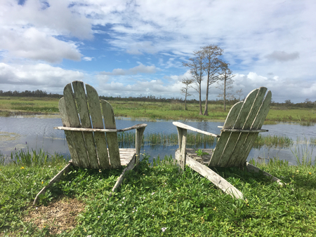 Two Adirondack chairs in the day on the swamp