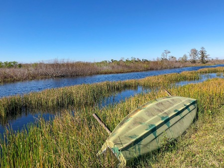 canoe on the shore of a swamp river Stock Photo