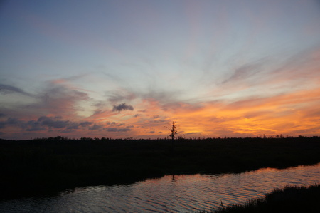 sunset in the everglades shows cypress trees and bayou Stock Photo