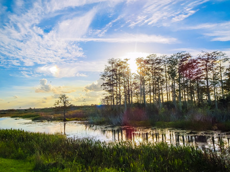 stunning sunset reflects into a river in the swamp Stock Photo