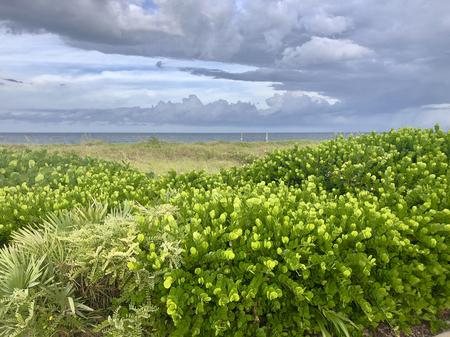 rain over the ocean at the beach Stock Photo