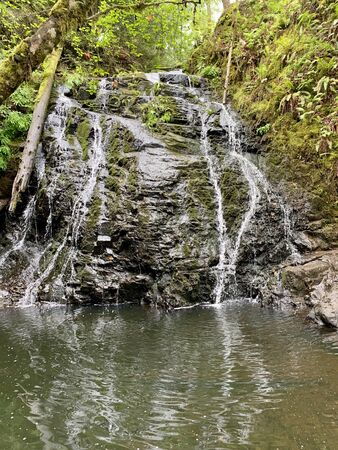Waterfall in the woods in Washington State