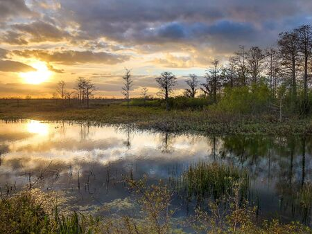 reflections of a sunset in the Florida swamps Stock Photo