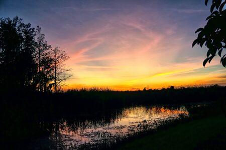 riflessi di un tramonto nelle paludi della Florida