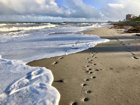 sea foam waves crashing on the beach