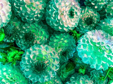 bouquet of green flowers in a bunch