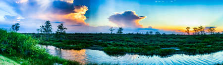 Colorful swamp sunset in Louisiana reflecting on American values.