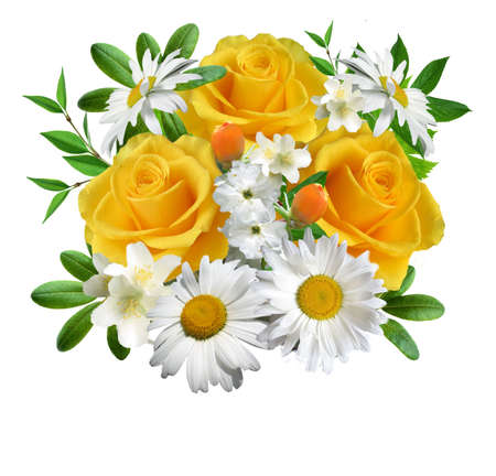 Collage  from flowers on a white background