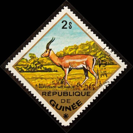 Postal stamp. Impala  is a medium-sized African antelope. Stock Photo - 5074553