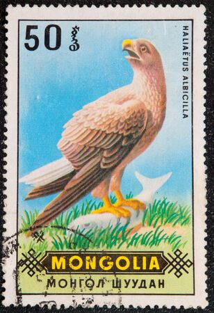 large bird: Postal stamp. The White-tailed Eagle, also known as the Sea Eagle, Erne, or White-tailed Sea-eagle, is a large bird of prey in the family Accipitridae.